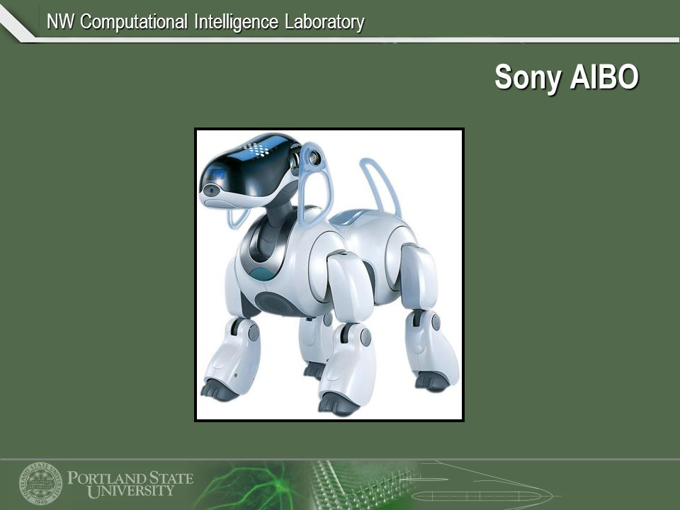 NW Computational Intelligence Laboratory Sony AIBO
