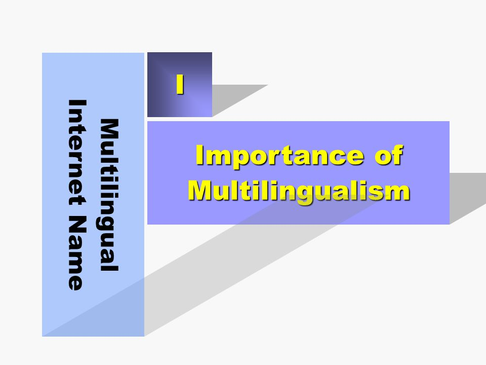 Importance of Multilingualism Multilingual Internet Name I