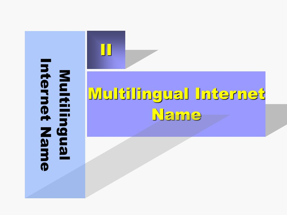 Multilingual Internet Name Multilingual Internet Name II