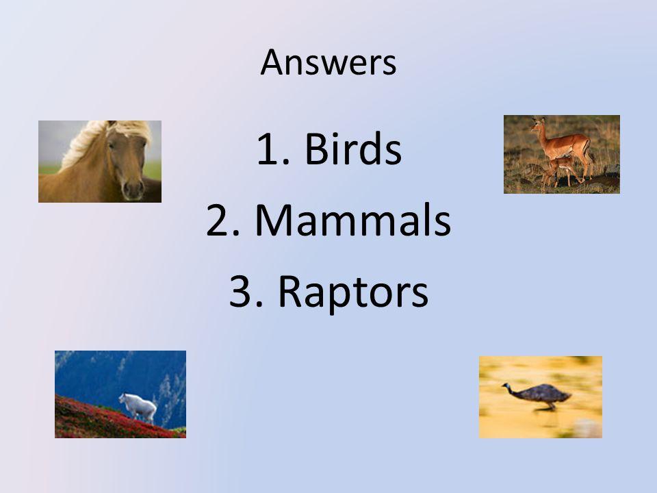 Answers 1. Birds 2. Mammals 3. Raptors