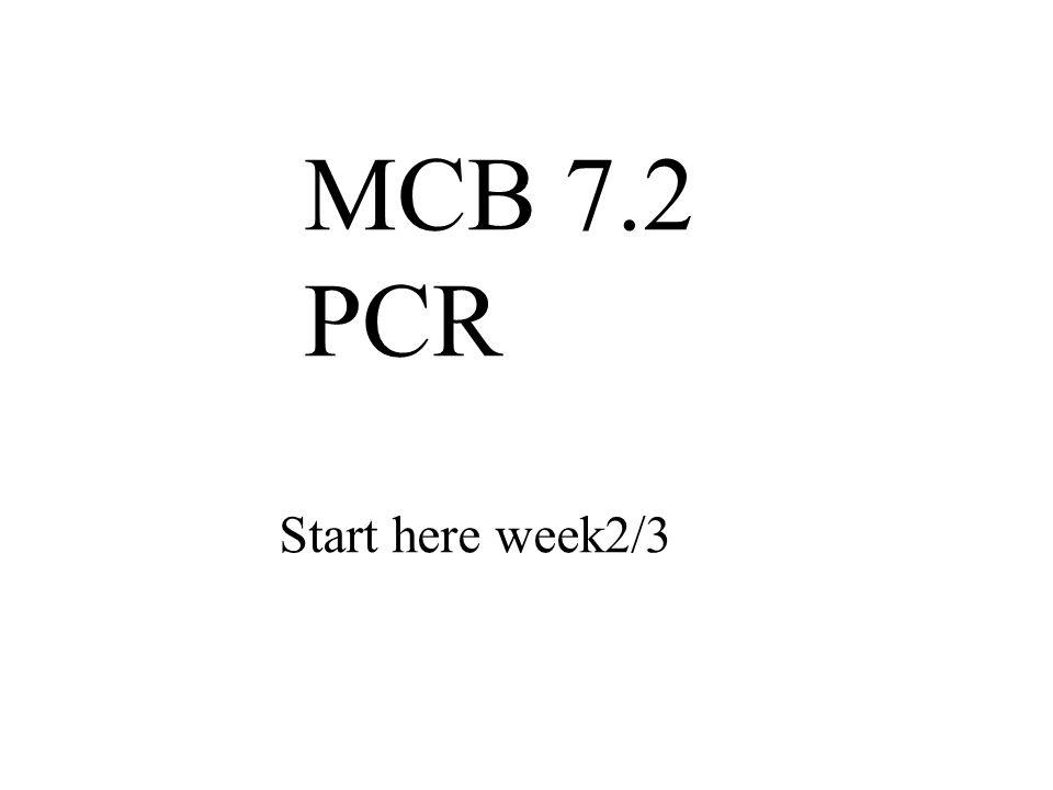 MCB 7.2 PCR Start here week2/3