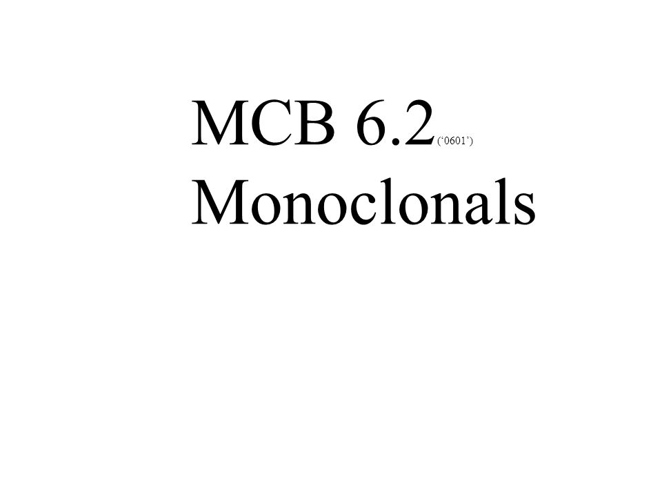 MCB 6.2 ('0601') Monoclonals