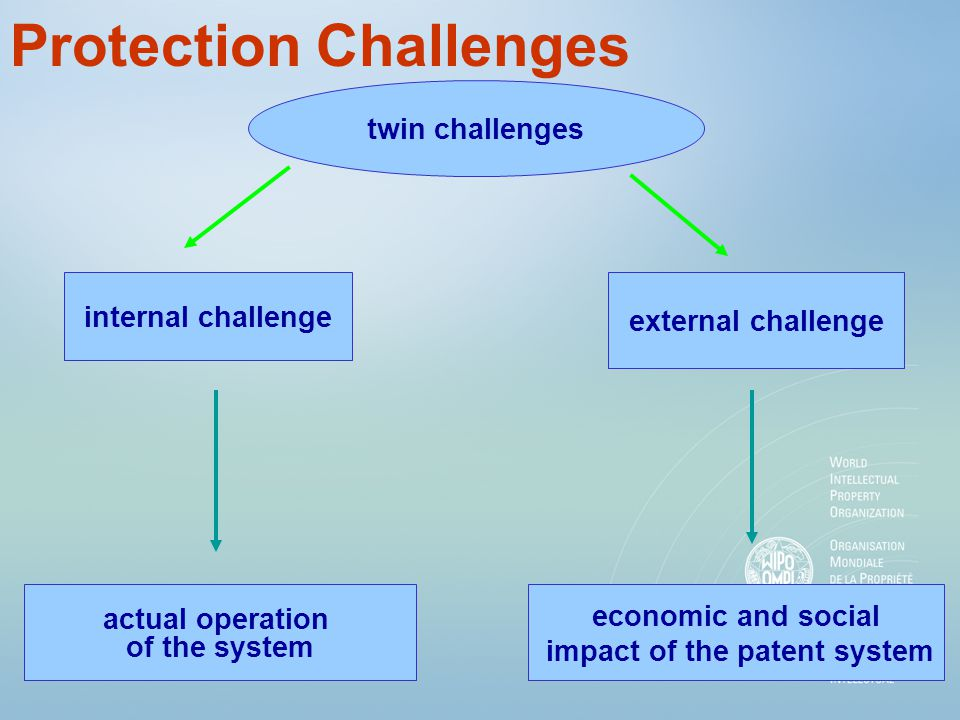 Protection Challenges internal challenge actual operation of the system economic and social impact of the patent system external challenge twin challe