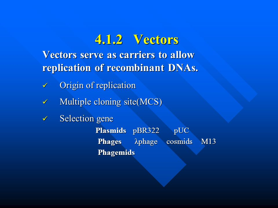 4.1.2 Vectors Vectors serve as carriers to allow replication of recombinant DNAs. Origin of replication Origin of replication Multiple cloning site(MC