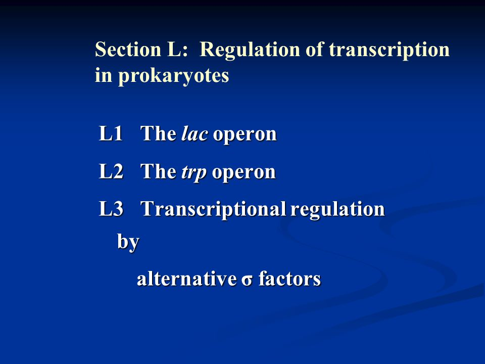 L1 The lac operon L2 The trp operon L3 Transcriptional regulation by alternative σ factors alternative σ factors Section L: Regulation of transcription in prokaryotes