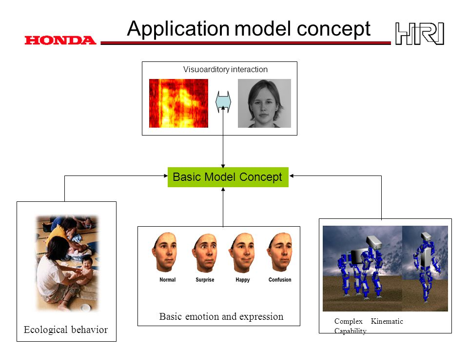 Application model concept Ecological behavior Complex Kinematic Capability Basic emotion and expression Visuoarditory interaction Basic Model Concept