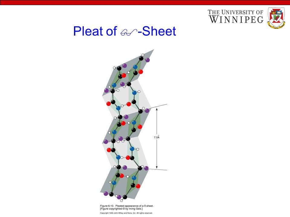 Pleat of  -Sheet