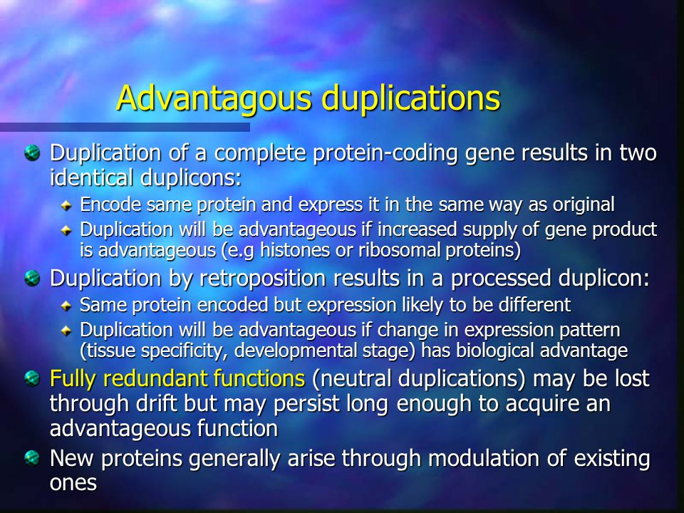 Advantagous duplications Duplication of a complete protein-coding gene results in two identical duplicons: Encode same protein and express it in the same way as original Duplication will be advantageous if increased supply of gene product is advantageous (e.g histones or ribosomal proteins) Duplication by retroposition results in a processed duplicon: Same protein encoded but expression likely to be different Duplication will be advantageous if change in expression pattern (tissue specificity, developmental stage) has biological advantage Fully redundant functions (neutral duplications) may be lost through drift but may persist long enough to acquire an advantageous function New proteins generally arise through modulation of existing ones