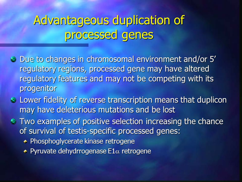 Advantageous duplication of processed genes Due to changes in chromosomal environment and/or 5' regulatory regions, processed gene may have altered regulatory features and may not be competing with its progenitor Lower fidelity of reverse transcription means that duplicon may have deleterious mutations and be lost Two examples of positive selection increasing the chance of survival of testis-specific processed genes: Phosphoglycerate kinase retrogene Pyruvate dehydrrogenase E1  retrogene