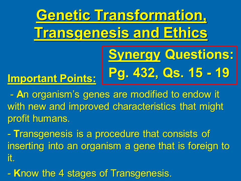 Genetic Transformation, Transgenesis and Ethics Synergy Questions: Pg.