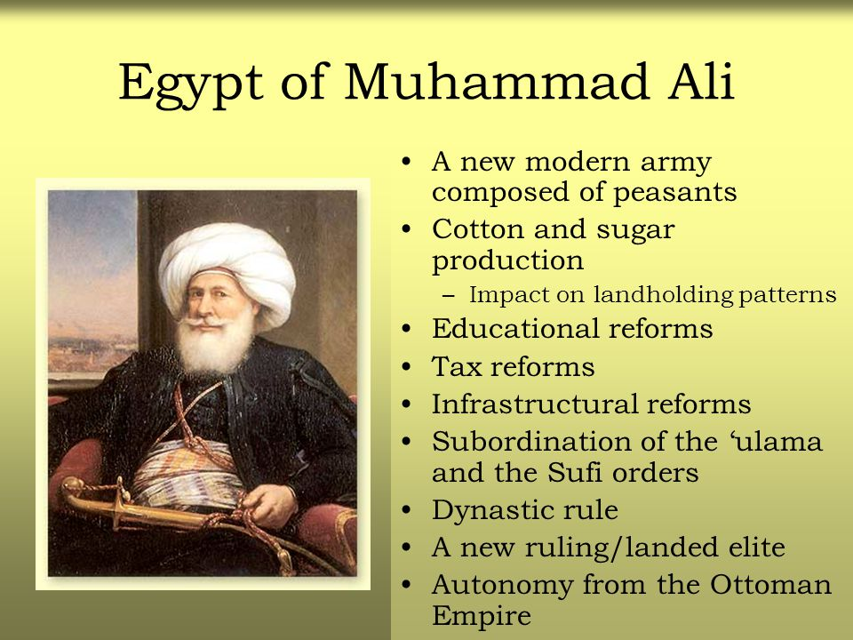 Egypt of Muhammad Ali A new modern army composed of peasants Cotton and sugar production –Impact on landholding patterns Educational reforms Tax refor
