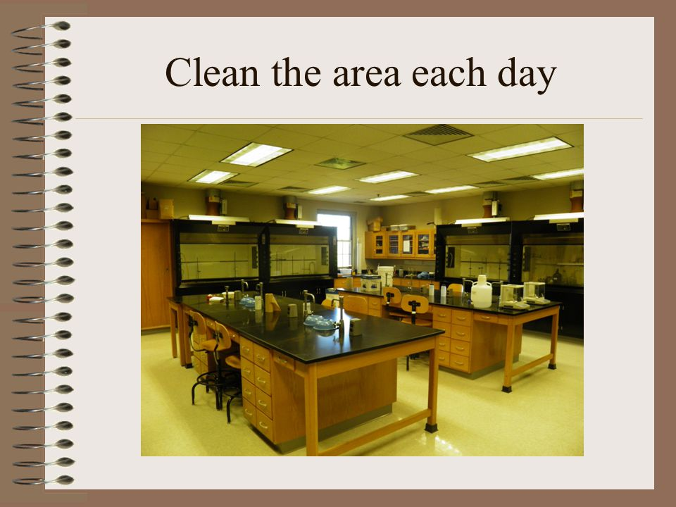 Clean the area each day