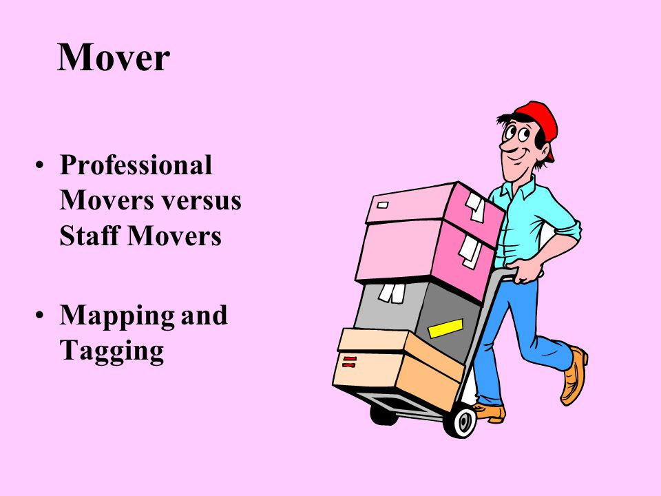 Mover Professional Movers versus Staff Movers Mapping and Tagging