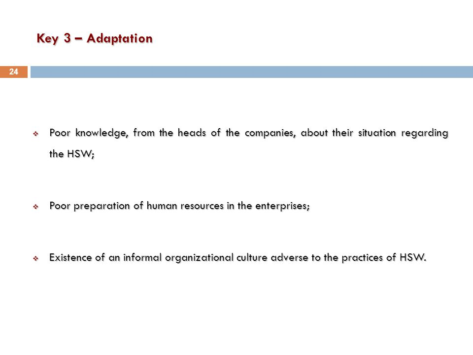 Key 3 – Adaptation  Poor knowledge, from the heads of the companies, about their situation regarding the HSW;  Poor preparation of human resources in the enterprises;  Existence of an informal organizational culture adverse to the practices of HSW.