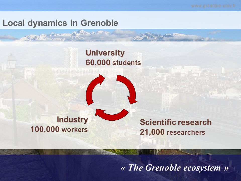 Local dynamics in Grenoble « The Grenoble ecosystem » University University 60,000 students Industry Industry 100,000 workers Scientific research Scientific research 21,000 researchers