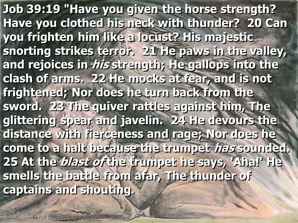 Job 39:19 Have you given the horse strength. Have you clothed his neck with thunder.