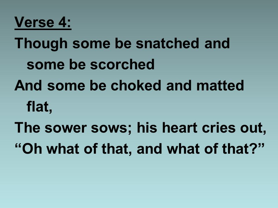 Verse 4: Though some be snatched and some be scorched And some be choked and matted flat, The sower sows; his heart cries out, Oh what of that, and what of that?
