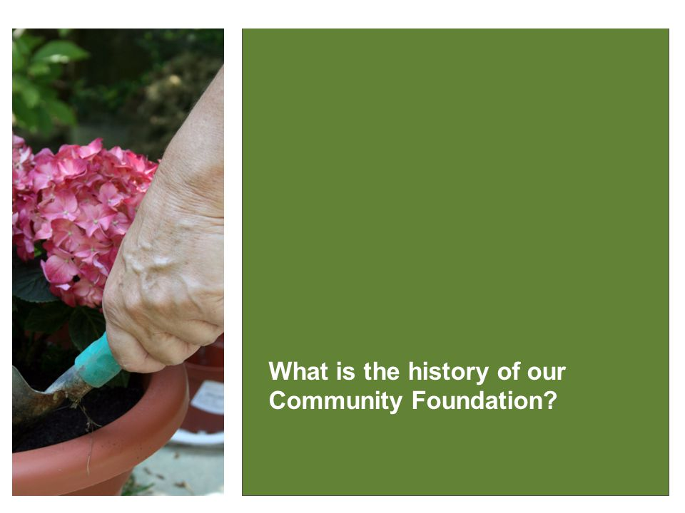 IT MAKES GOOD SENSE What is the history of our Community Foundation