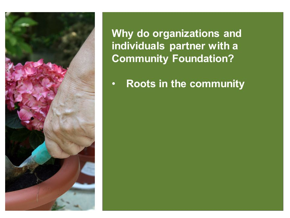 IT MAKES GOOD SENSE Why do organizations and individuals partner with a Community Foundation.