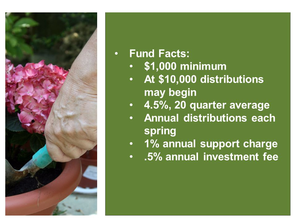 IT MAKES GOOD SENSE Fund Facts: $1,000 minimum At $10,000 distributions may begin 4.5%, 20 quarter average Annual distributions each spring 1% annual support charge.5% annual investment fee
