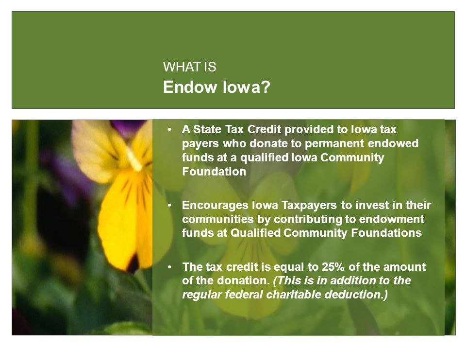 Endow Iowa.