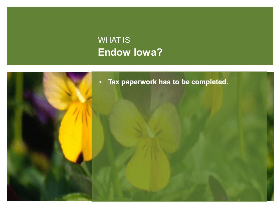 Endow Iowa WHAT IS Tax paperwork has to be completed.