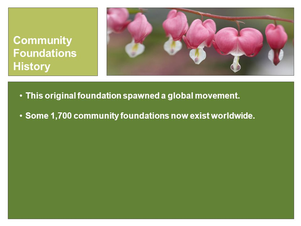 This original foundation spawned a global movement.