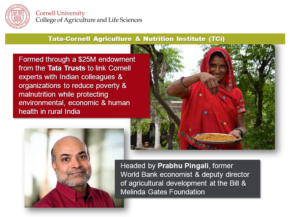 Headed by Prabhu Pingali, former World Bank economist & deputy director of agricultural development at the Bill & Melinda Gates Foundation Formed through a $25M endowment from the Tata Trusts to link Cornell experts with Indian colleagues & organizations to reduce poverty & malnutrition while protecting environmental, economic & human health in rural India Tata-Cornell Agriculture & Nutrition Institute (TCi)