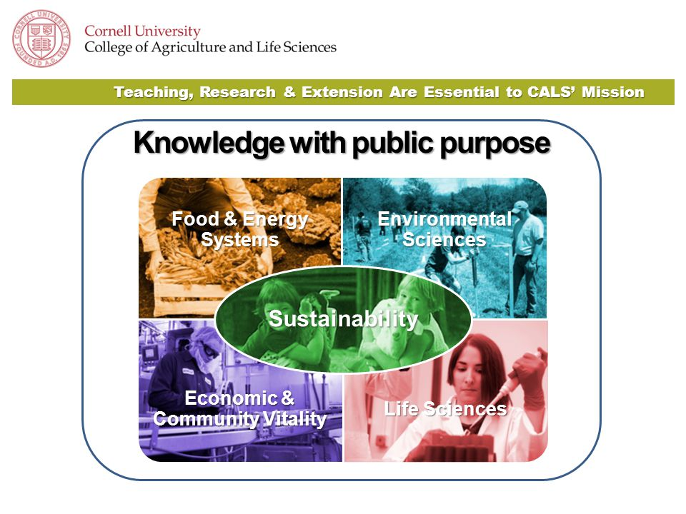 Teaching, Research & Extension Are Essential to CALS' Mission Knowledge with public purpose Food & Energy Systems Environmental Sciences Economic & Community Vitality Life Sciences Sustainability