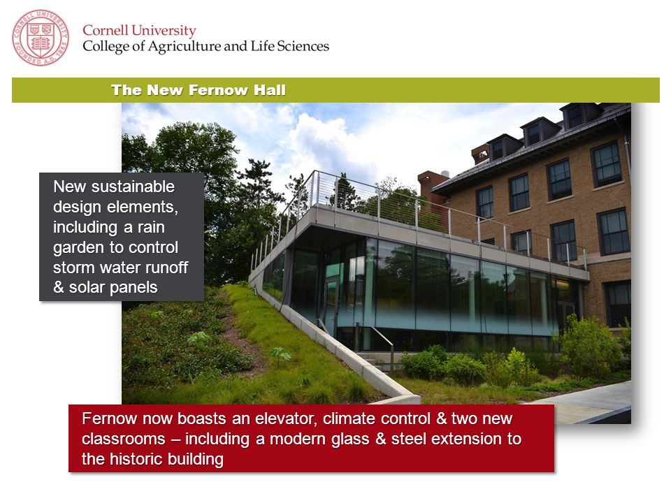 Fernow now boasts an elevator, climate control & two new classrooms – including a modern glass & steel extension to the historic building The New Fern