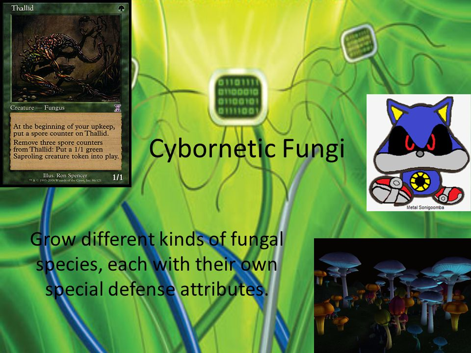 Cybornetic Fungi Grow different kinds of fungal species, each with their own special defense attributes.