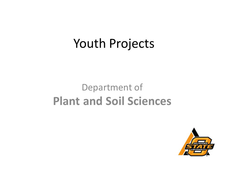Youth Projects Department of Plant and Soil Sciences