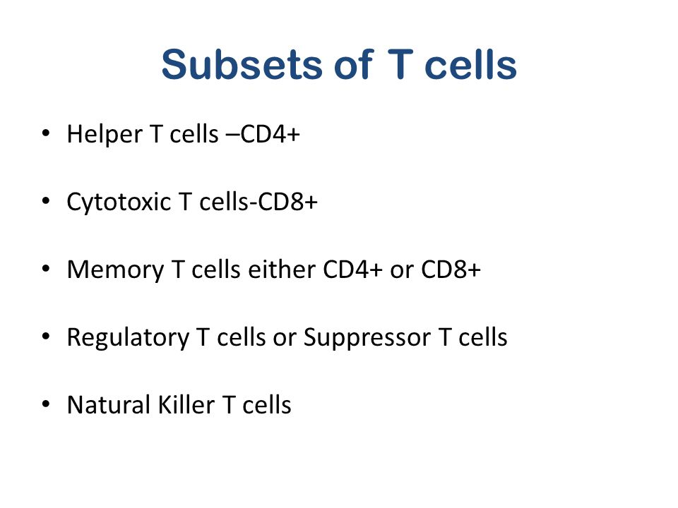 Subsets of T cells Helper T cells –CD4+ Cytotoxic T cells-CD8+ Memory T cells either CD4+ or CD8+ Regulatory T cells or Suppressor T cells Natural Kil
