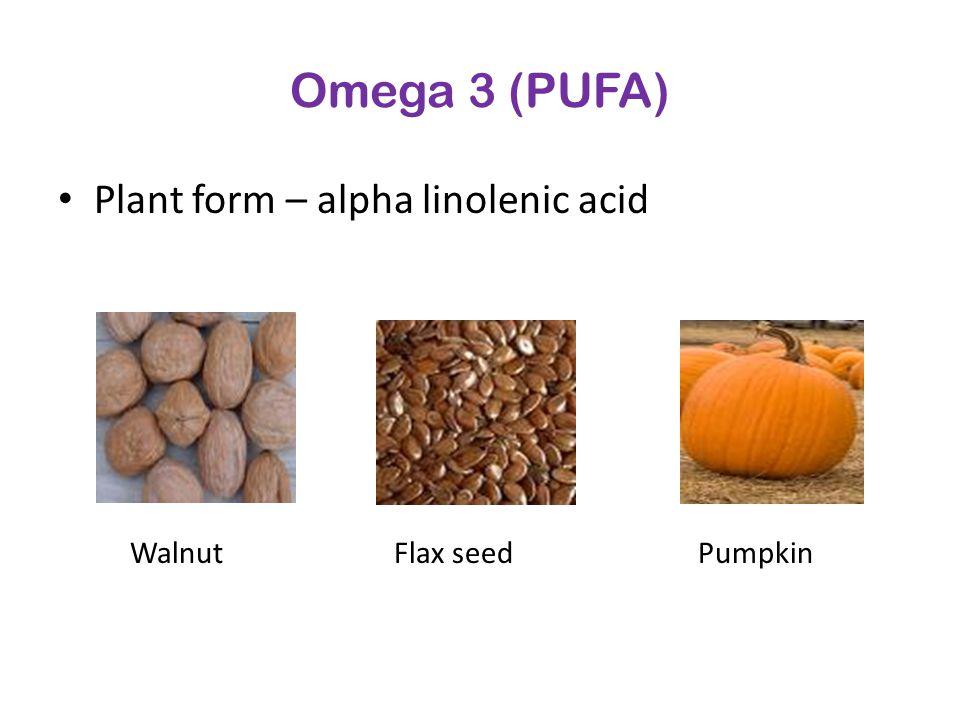 Omega 3 (PUFA) Plant form – alpha linolenic acid WalnutFlax seedPumpkin