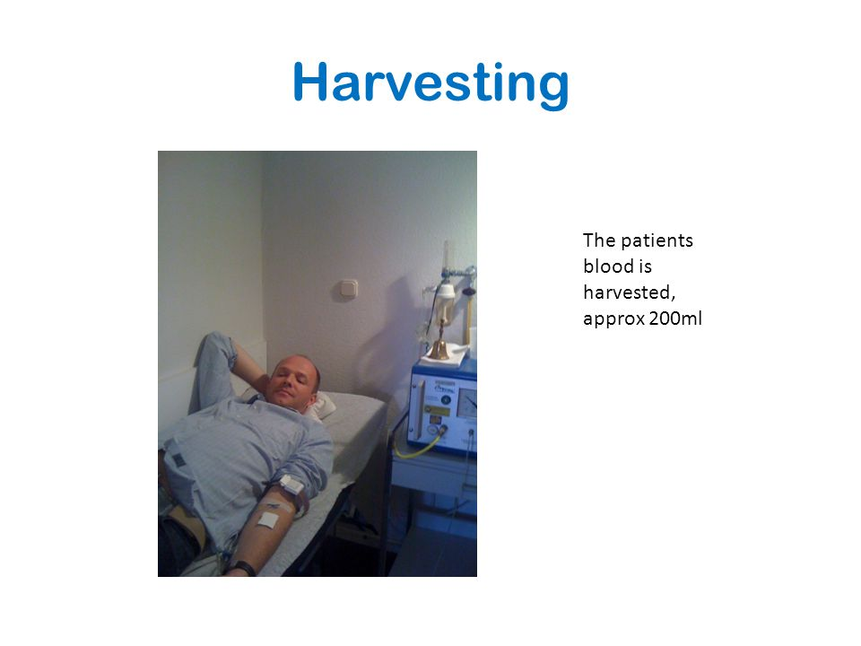 Harvesting The patients blood is harvested, approx 200ml