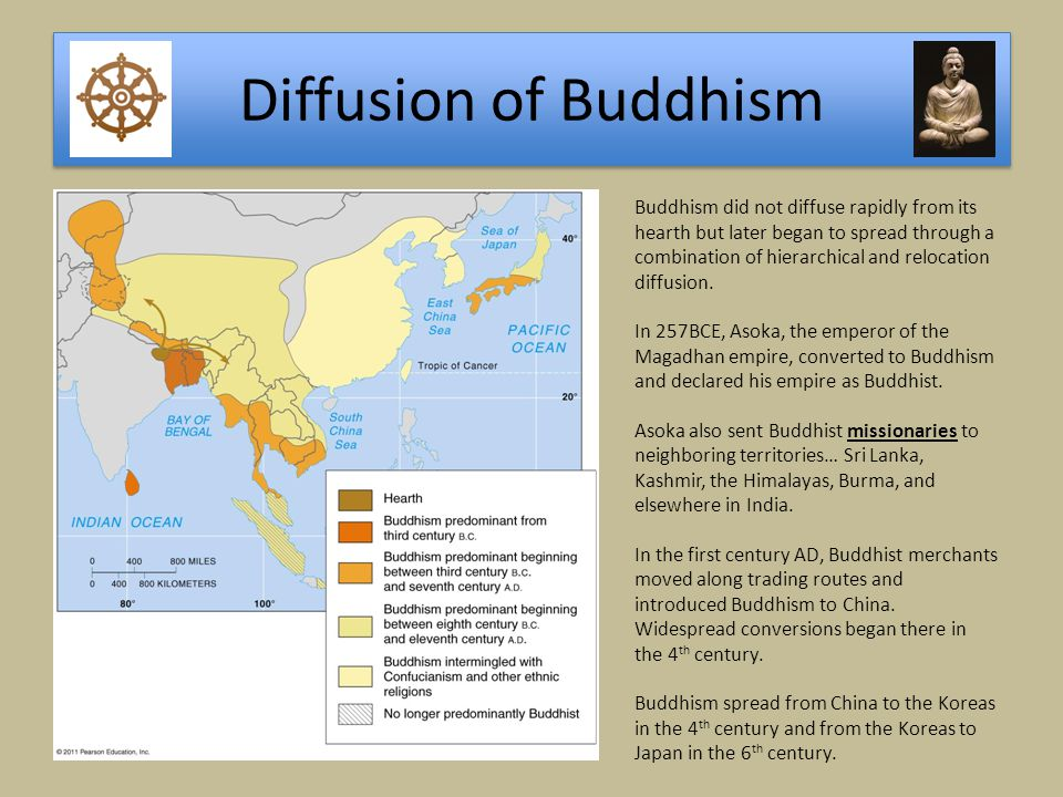 Diffusion of Buddhism Buddhism did not diffuse rapidly from its hearth but later began to spread through a combination of hierarchical and relocation