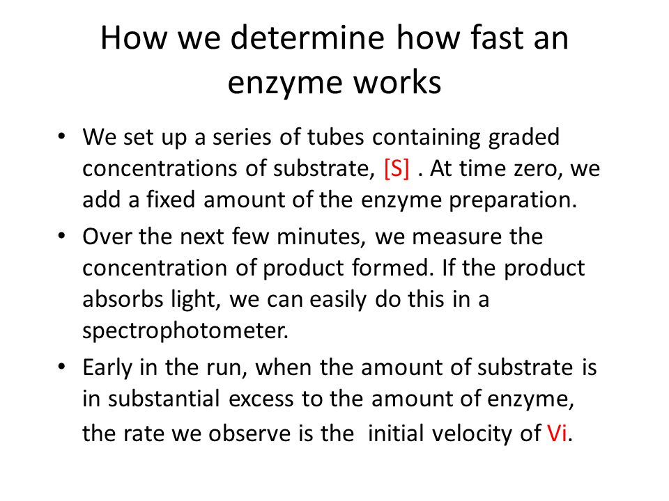 How we determine how fast an enzyme works We set up a series of tubes containing graded concentrations of substrate, [S].