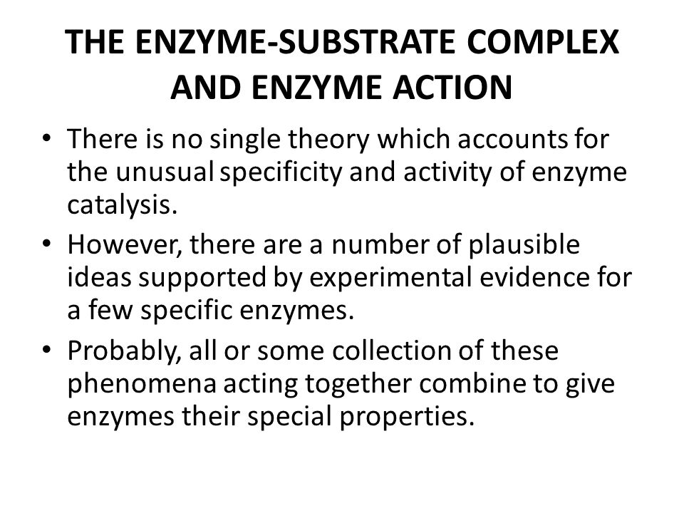 THE ENZYME-SUBSTRATE COMPLEX AND ENZYME ACTION There is no single theory which accounts for the unusual specificity and activity of enzyme catalysis.
