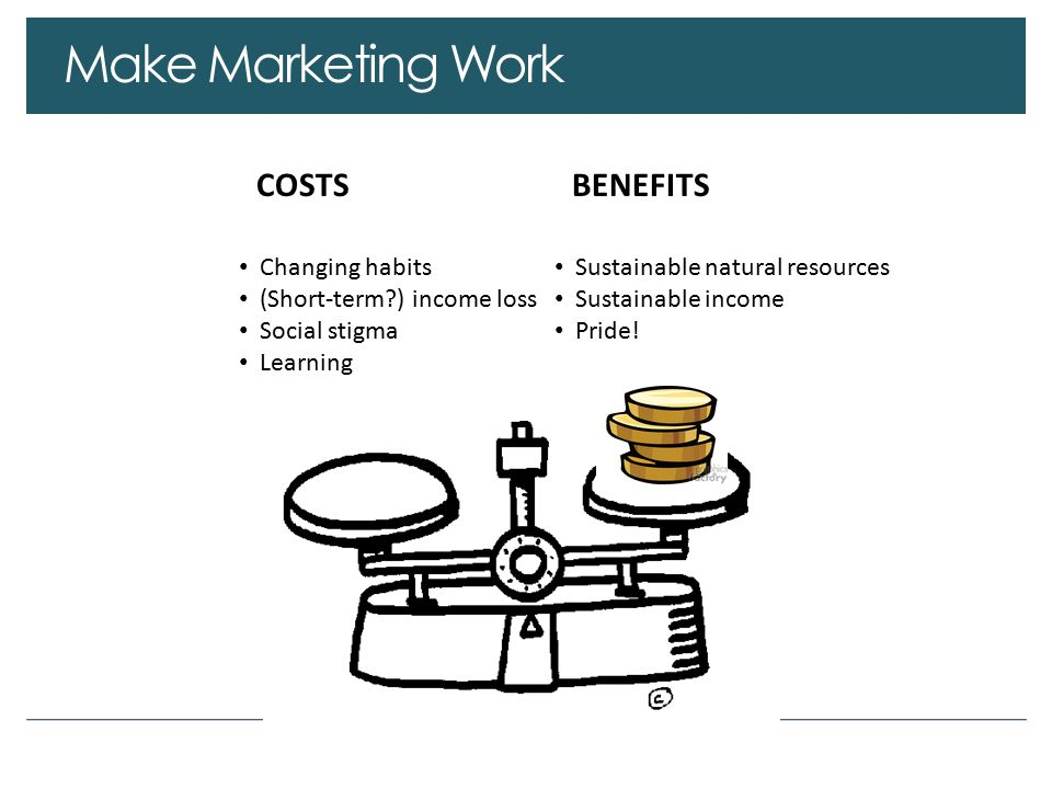 Make Marketing Work COSTSBENEFITS Changing habits (Short-term ) income loss Social stigma Learning Sustainable natural resources Sustainable income Pride!