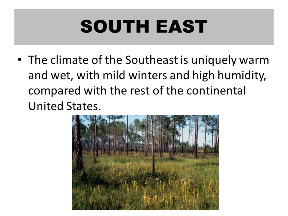 SOUTH EAST The climate of the Southeast is uniquely warm and wet, with mild winters and high humidity, compared with the rest of the continental United States.