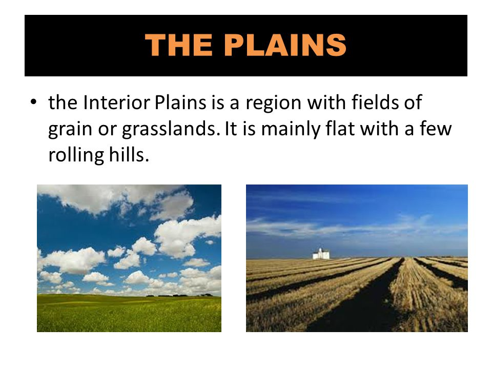THE PLAINS the Interior Plains is a region with fields of grain or grasslands.