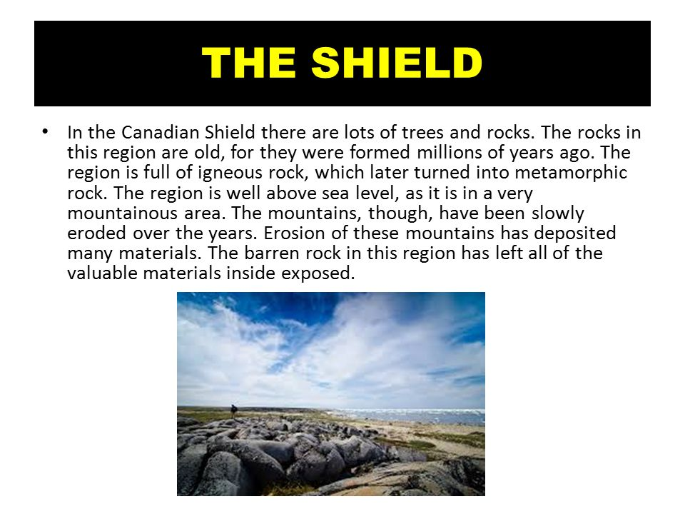 THE SHIELD In the Canadian Shield there are lots of trees and rocks.