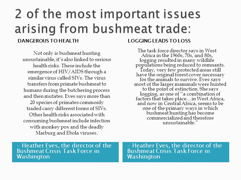 - Heather Eves, the director of the Bushmeat Crisis Task Force in Washington DANGEROUS TO HEALTH Not only is bushmeat hunting unsustainable, it's also linked to serious health risks.