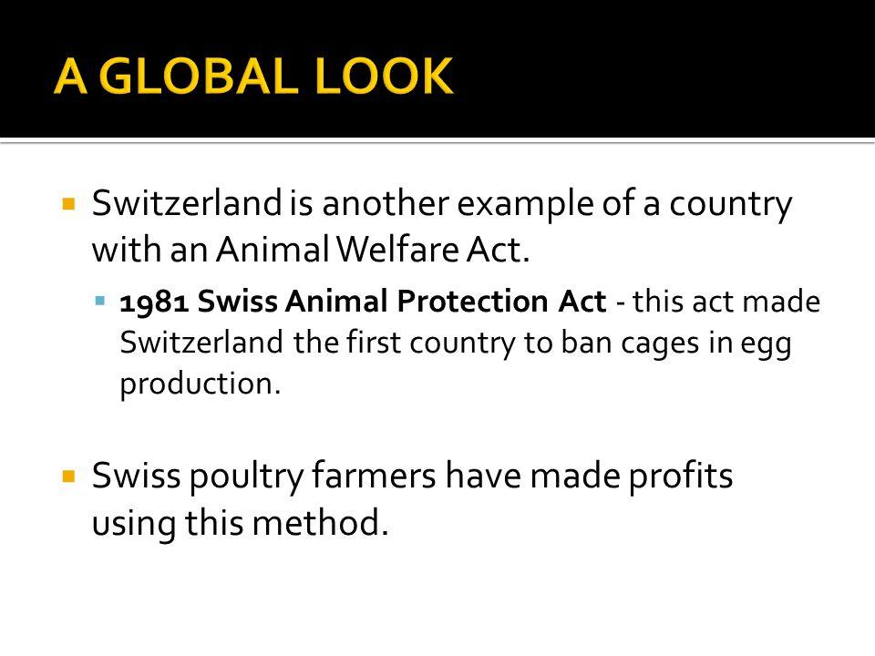  Switzerland is another example of a country with an Animal Welfare Act.  1981 Swiss Animal Protection Act - this act made Switzerland the first cou