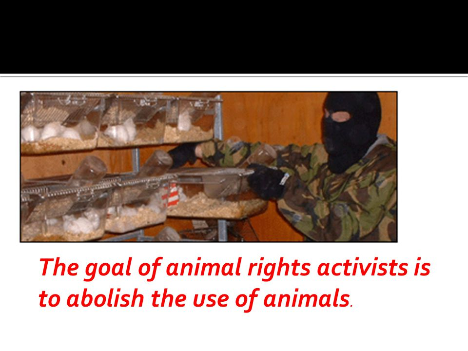 The goal of animal rights activists is to abolish the use of animals.