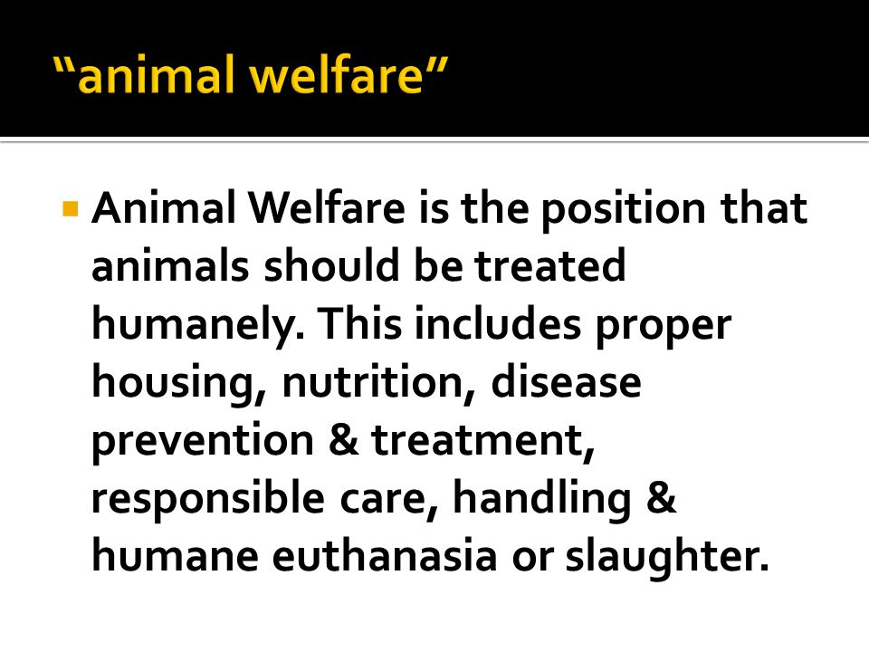  Animal Welfare is the position that animals should be treated humanely.