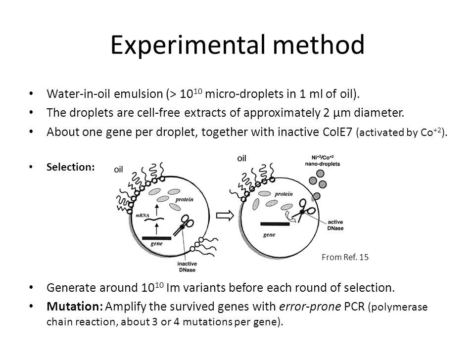 Experimental method Water-in-oil emulsion (> 10 10 micro-droplets in 1 ml of oil). The droplets are cell-free extracts of approximately 2 µm diameter.