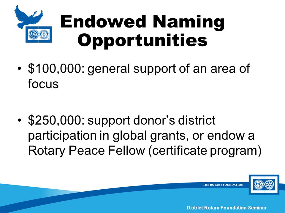 District Rotary Foundation Seminar $100,000: general support of an area of focus $250,000: support donor's district participation in global grants, or