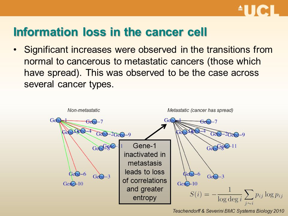 Information loss in the cancer cell Significant increases were observed in the transitions from normal to cancerous to metastatic cancers (those which have spread).