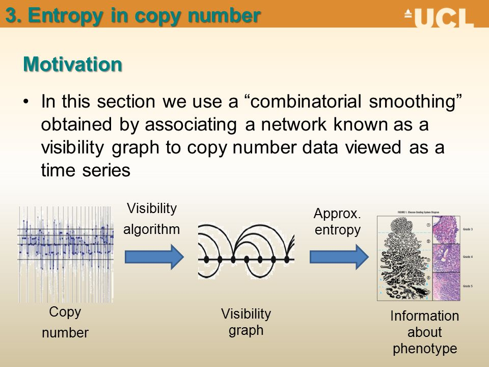 Motivation 3. Entropy in copy number Copy number Visibility graph Approx.